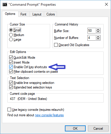enable Ctrl key shortcuts in command prompt